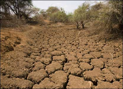 history of drought in in detail weather  drought in sindh in 2001