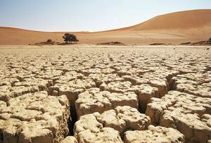 Sindh: Its either flood or drought!