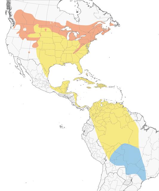 veery bird map